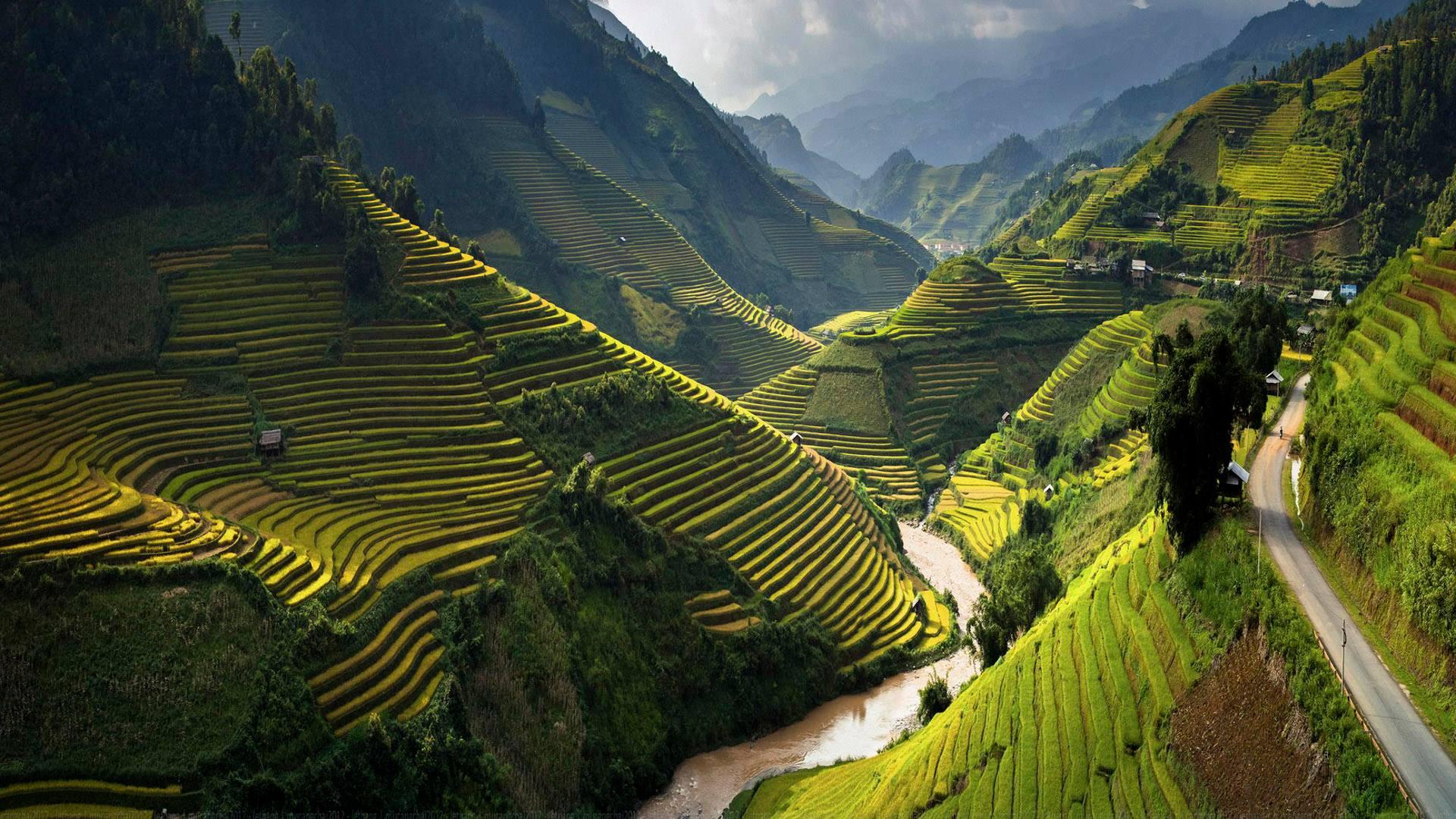 Информация о вьетнаме