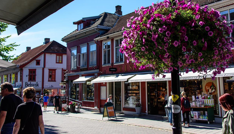 Город Лиллехаммер летом