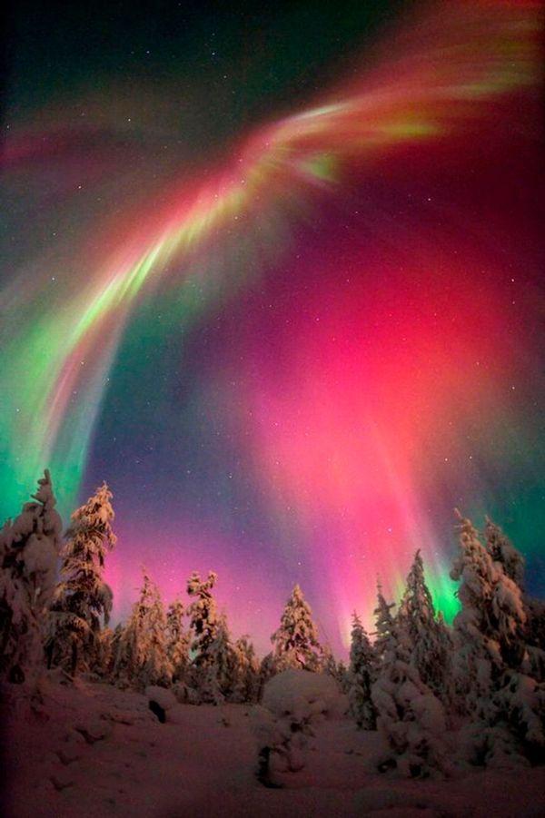 Фото: сияние красно-зеленого цвета