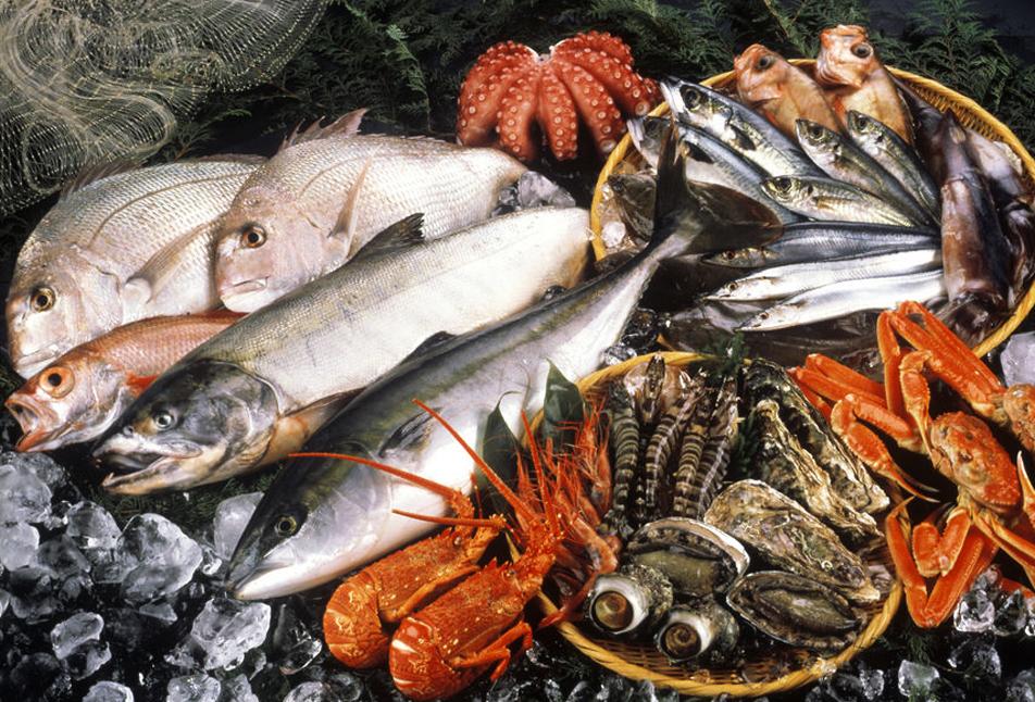 Фото: рыба и морепродукты