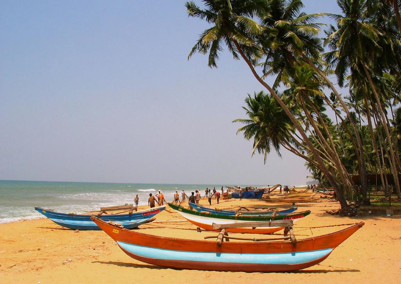 Фото: Ваддува, Шри-Ланка