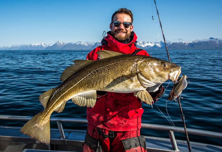 Фото: рыбалка на Лофотенских островах