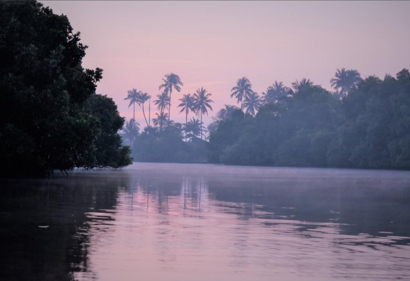 Фото: лагуна Рекава во время рассвета