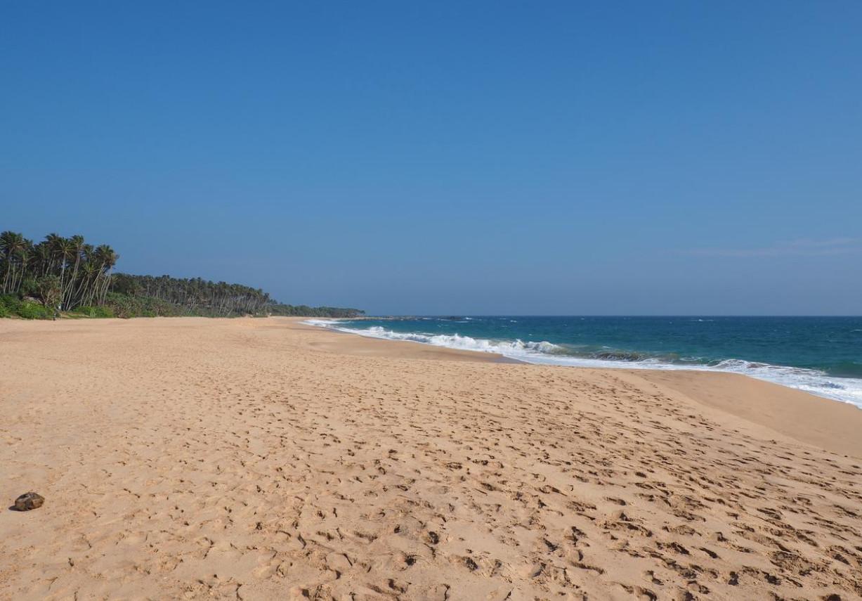 Фото: пляж Рекава