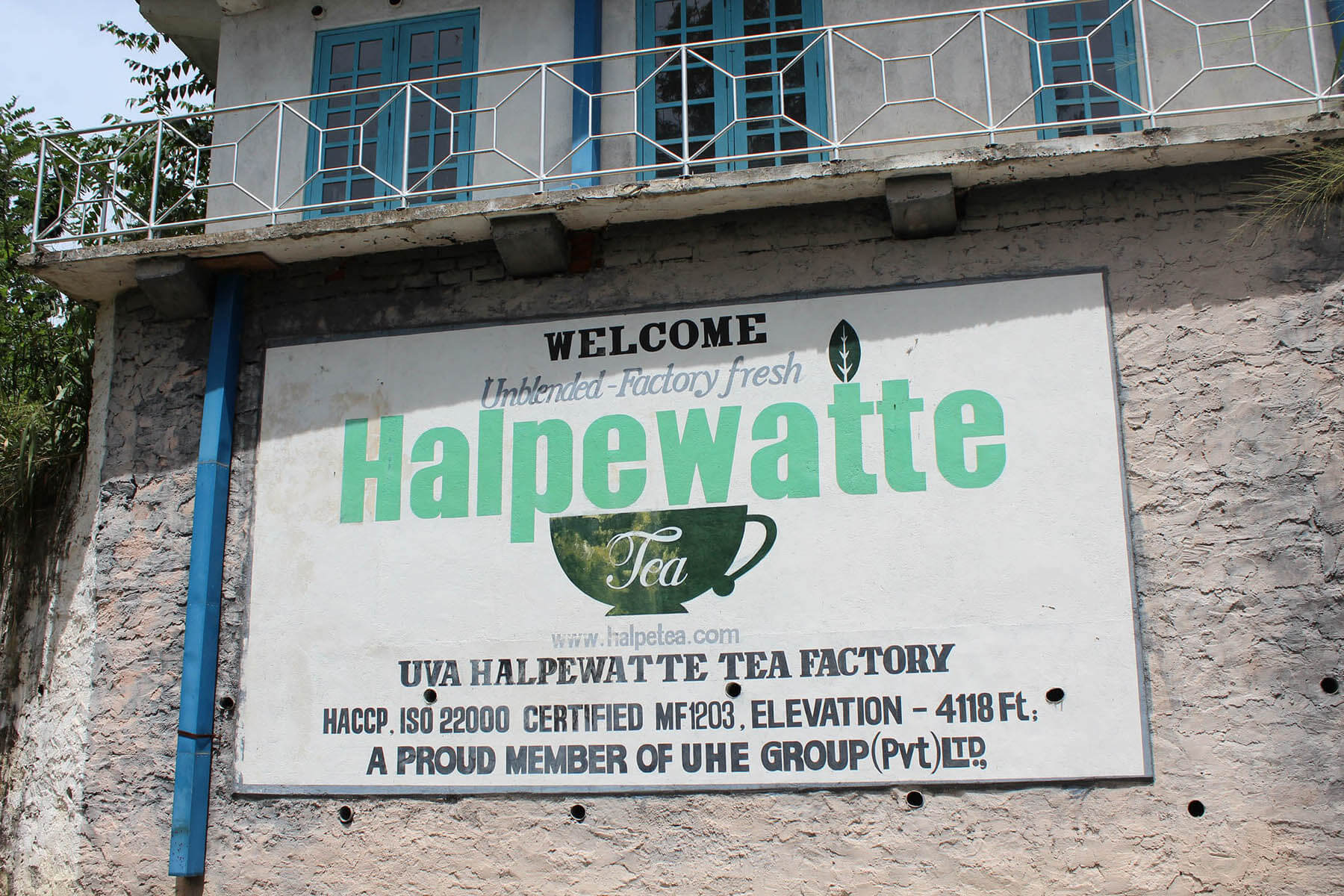 Фабрика чая Halpewatte Tea Factory