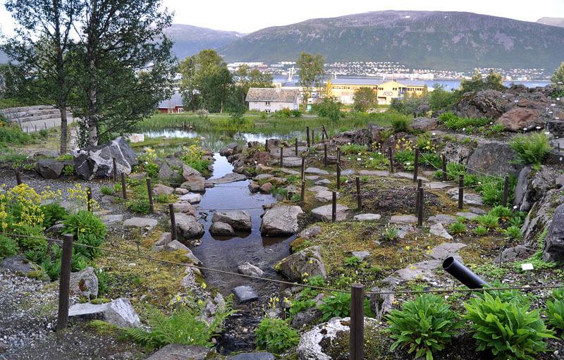 Ботанический сад Тромсё