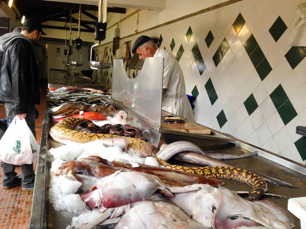 Огромный выбор рыбы и разнообразных моллюсков