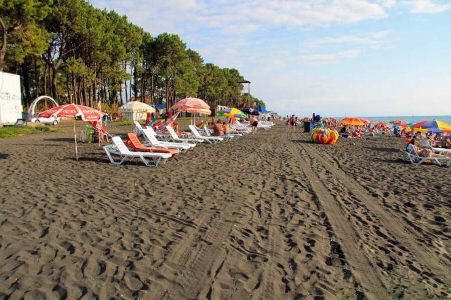 Пляж Уреки, рядом сосновый лес