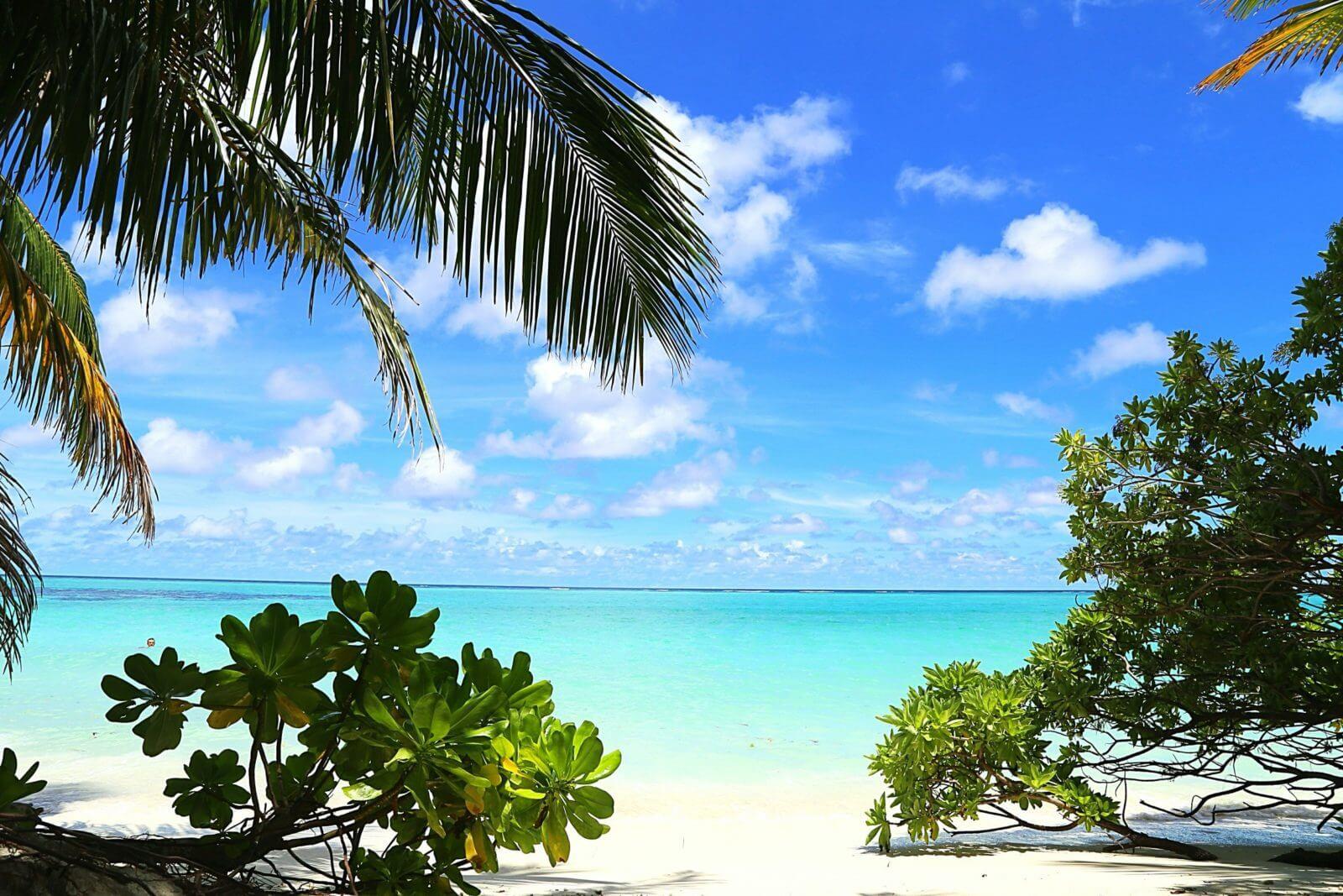 Мальдивы, остров Тодду