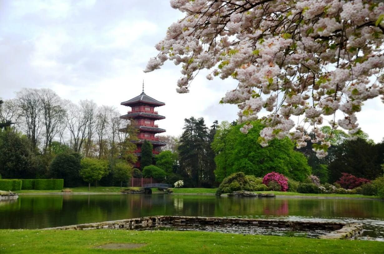 Китайский павильон Японская башня