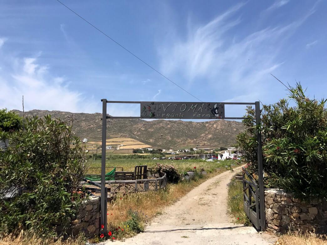 Органическая ферма Mykonos Vioma Organic Farm