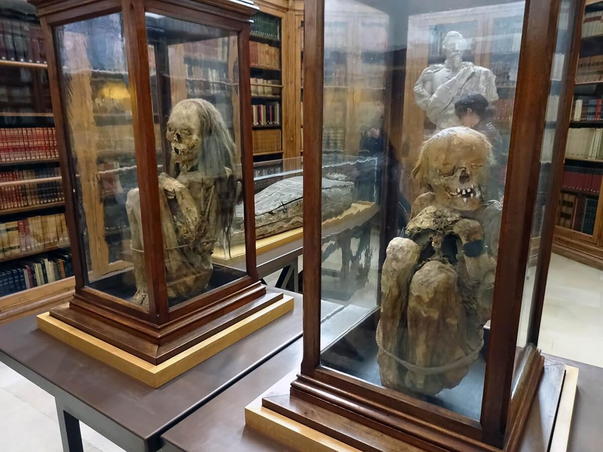 Перуанские мумии в церкви Кармо в Лиссабоне