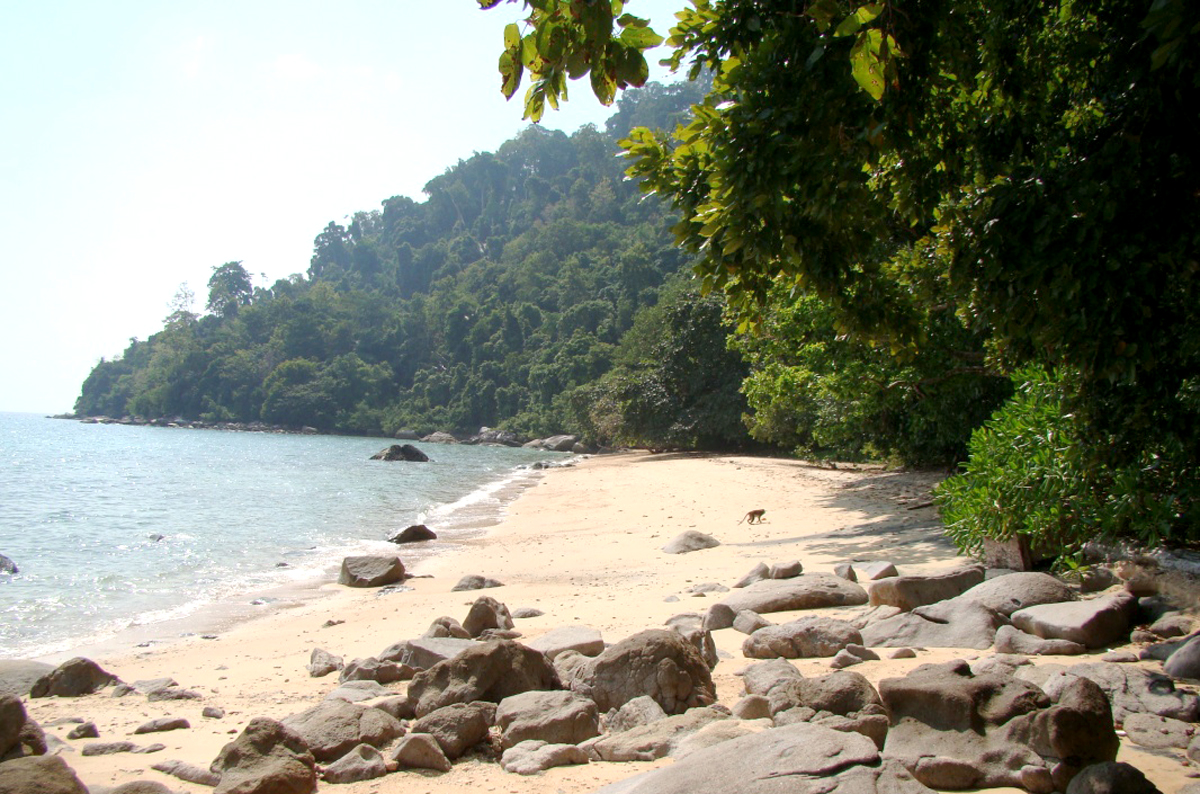 Манки-бич на острове Тиоман