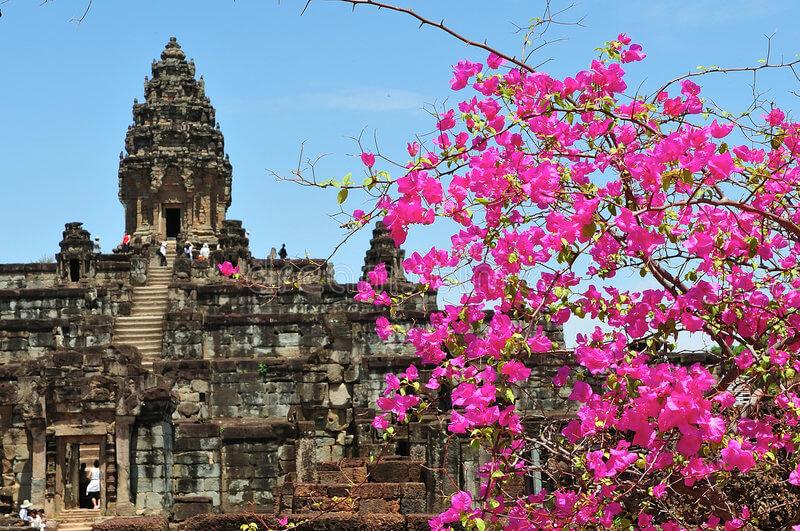 Цветущий  храмовый комплекс Роулос