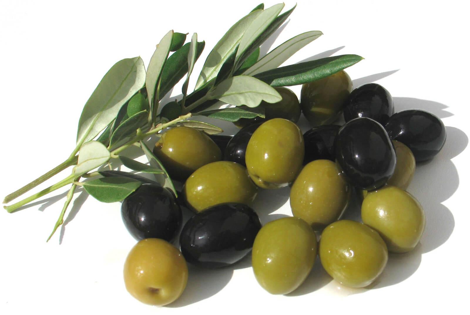 Оливки разной стадии зрелости - зеленые и черные