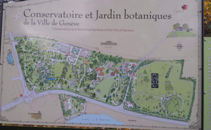 Карта ботанического сада Villa le Chene