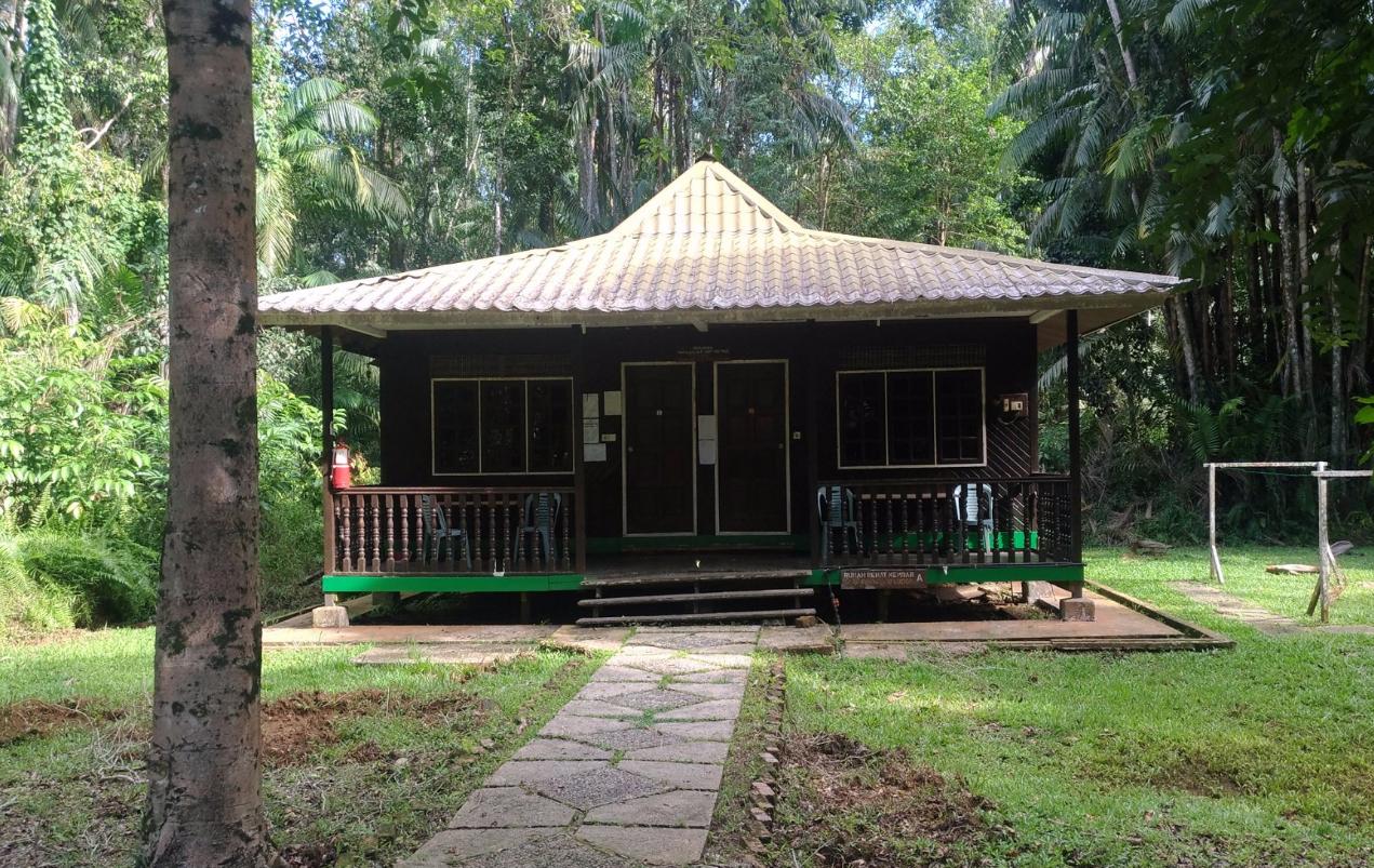 Домики на территории Бако