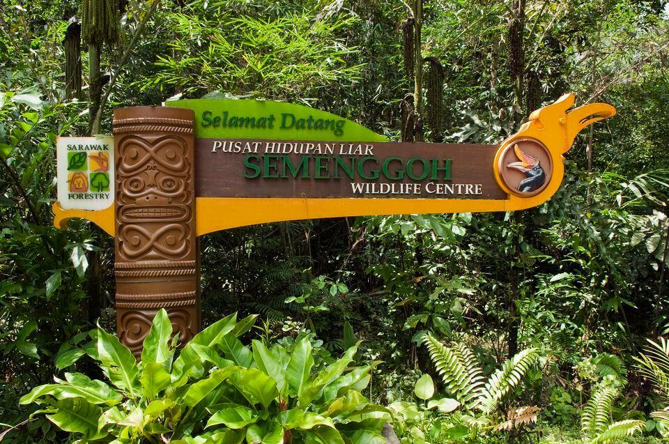 Природный заповедник Семенггох (Semenggoh Nature Reserve)