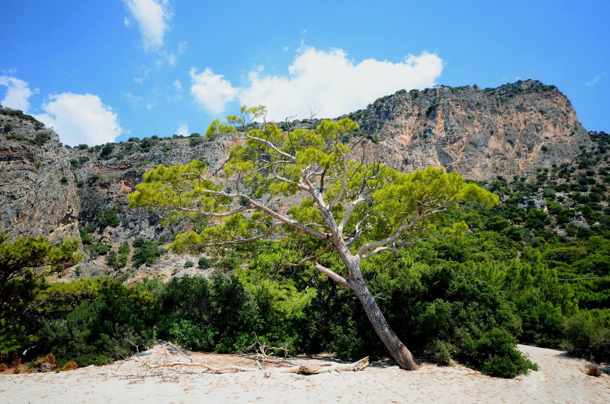 Национальный парк Кидрак