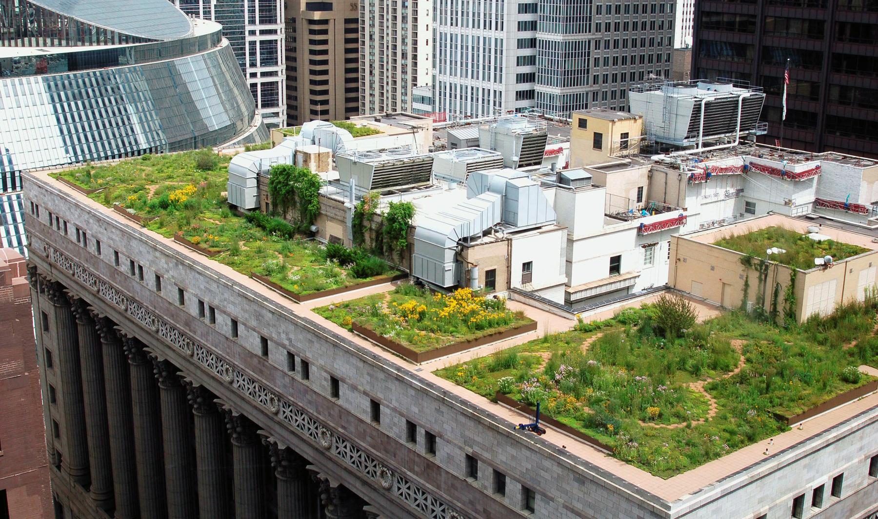 Сад на крыше здания в Чикаго