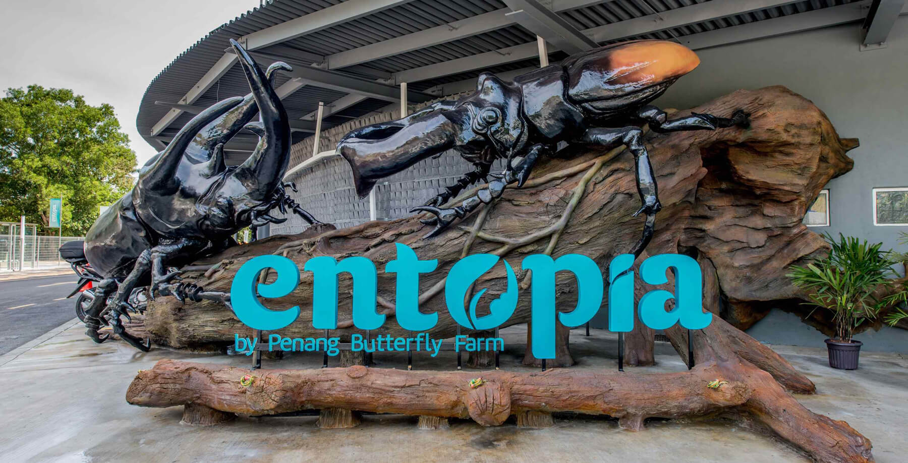 Ферма бабочек Entopia