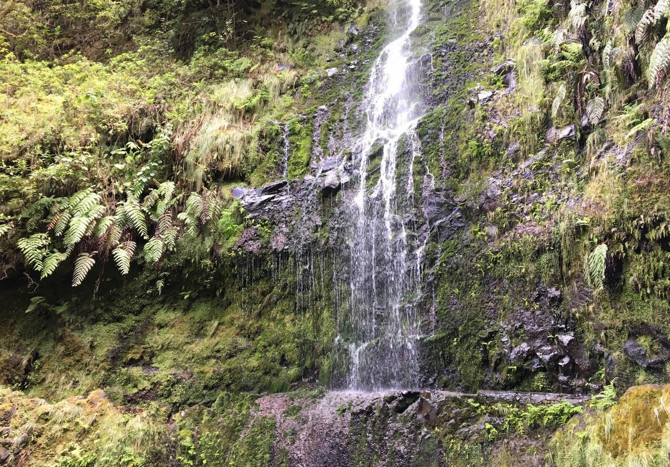 Водопад, Мадейра