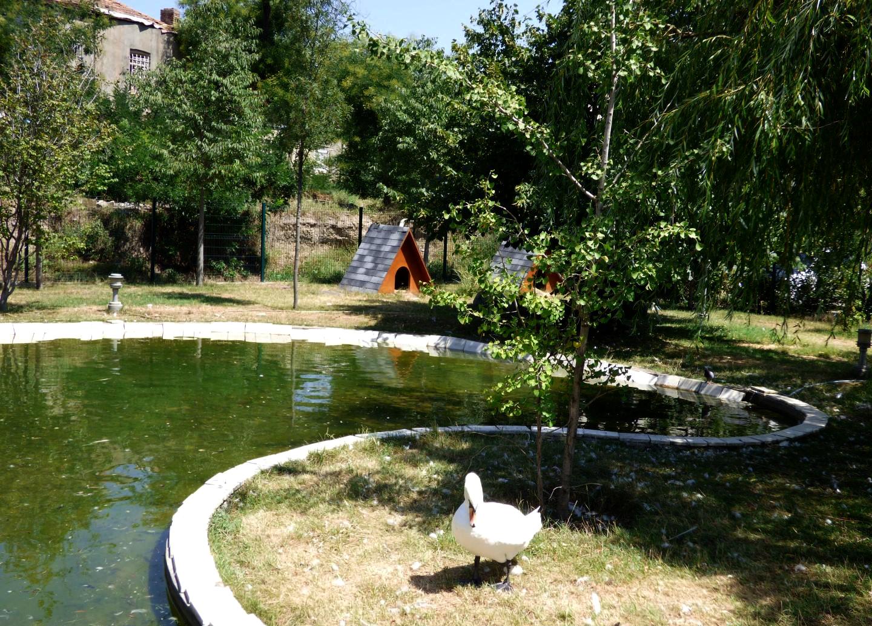 Парк Собора Цминда Самеба