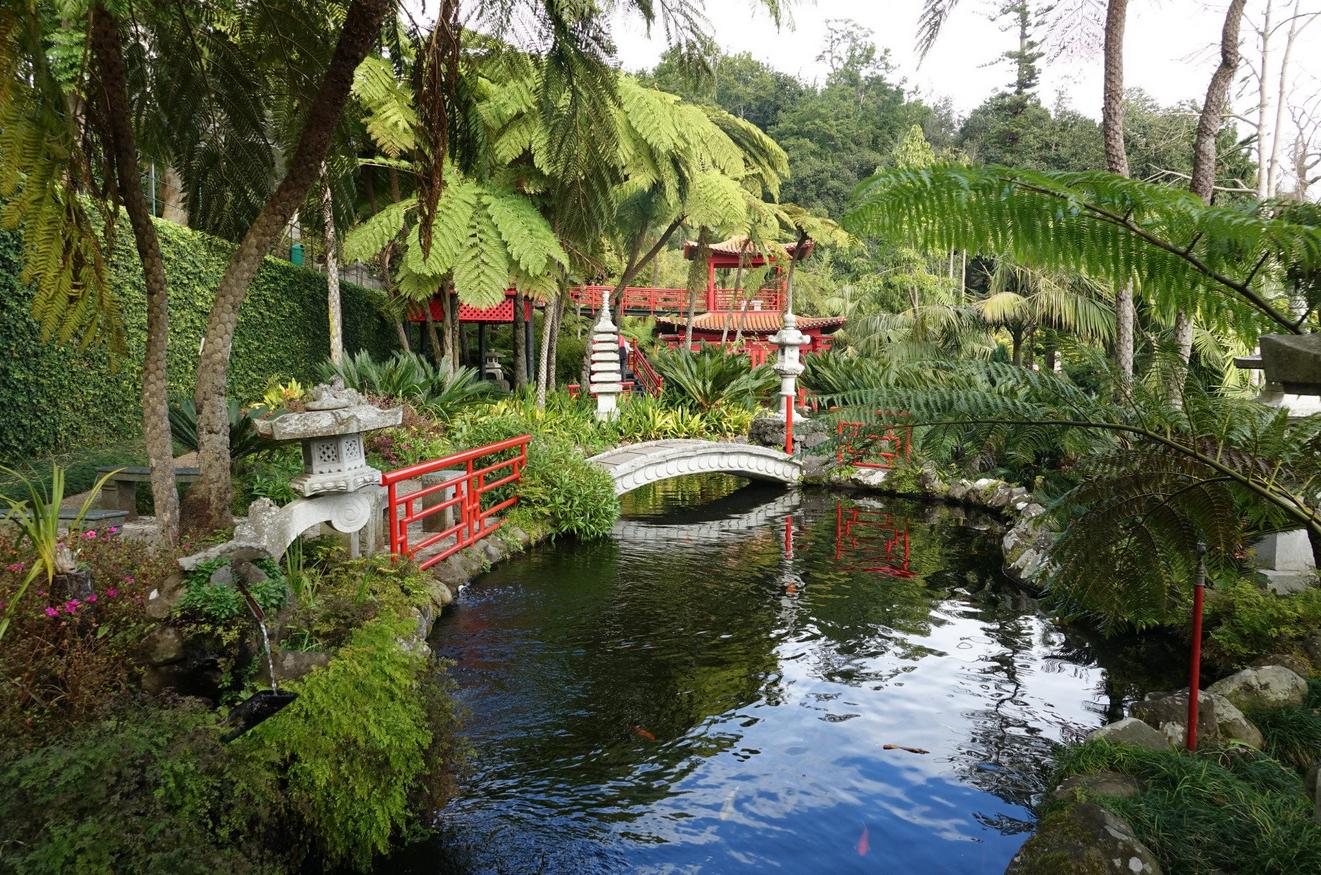 В тропическом саду дворца Монте