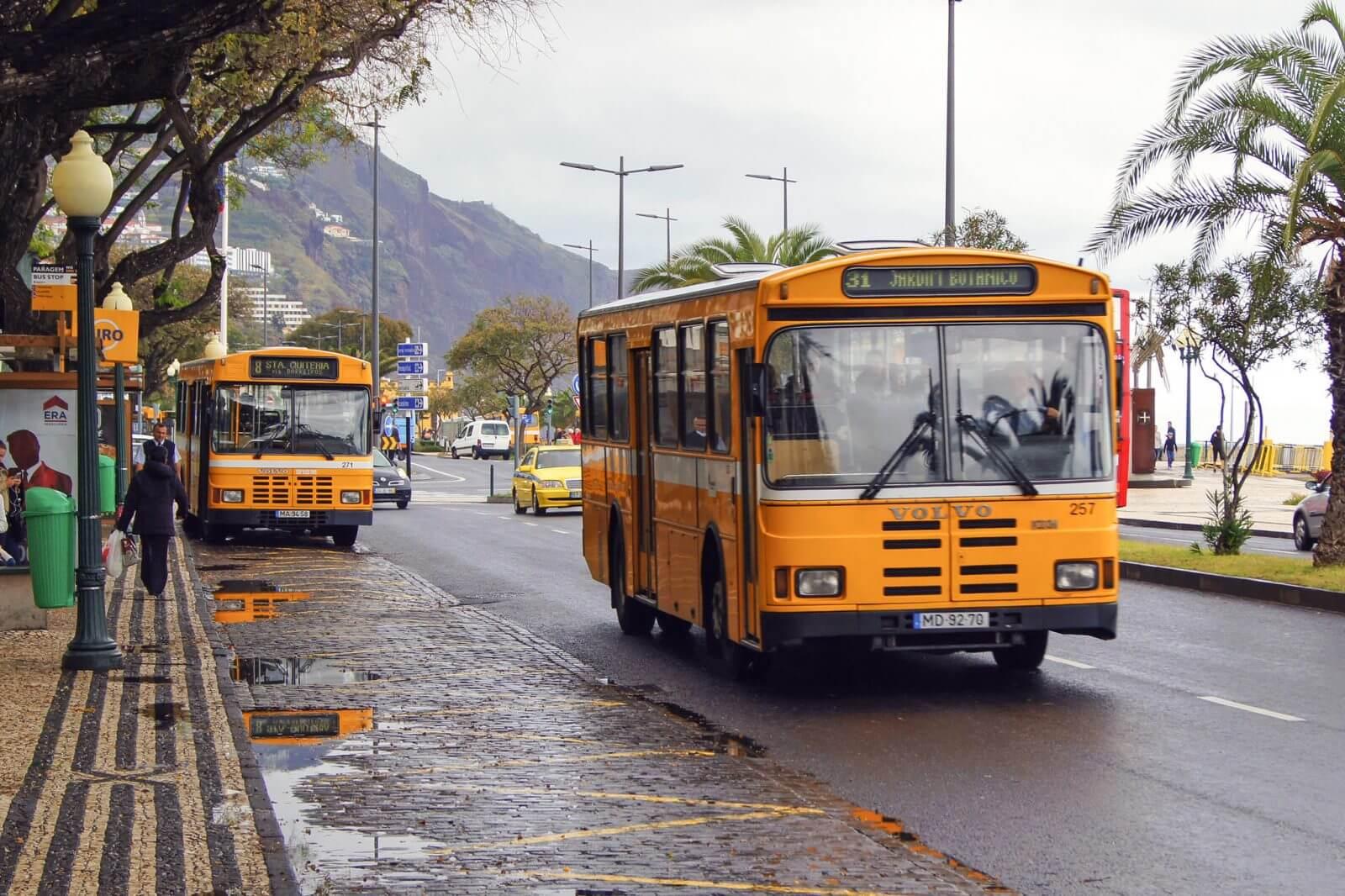 Автобус №31