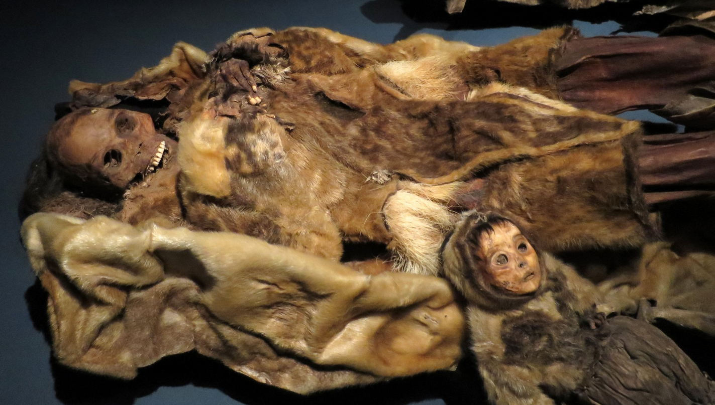 Мумии в музее