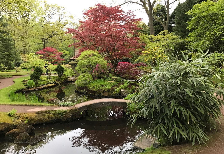 Японский сад, Гаага