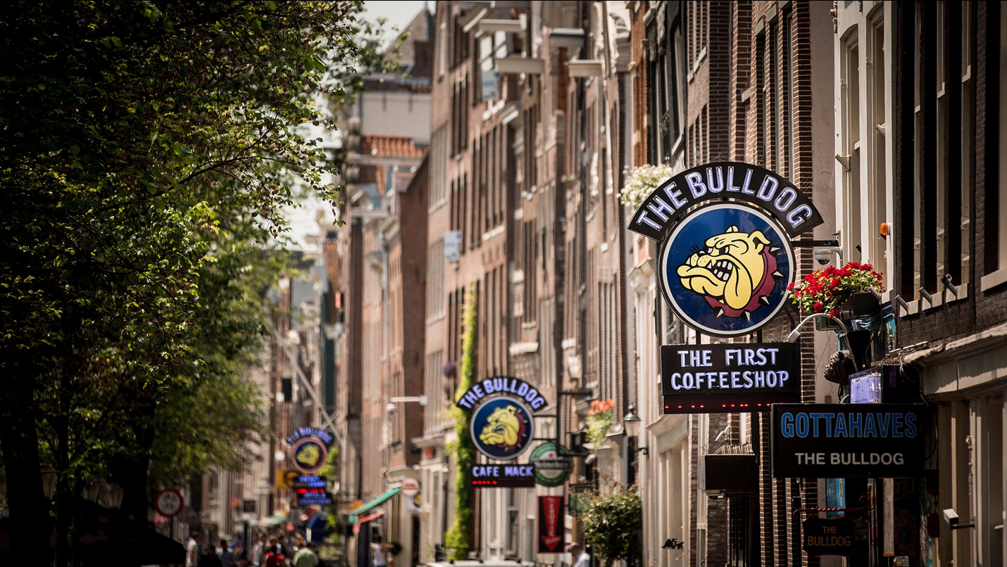 Кофешоп The Bulldog Coffeeshop