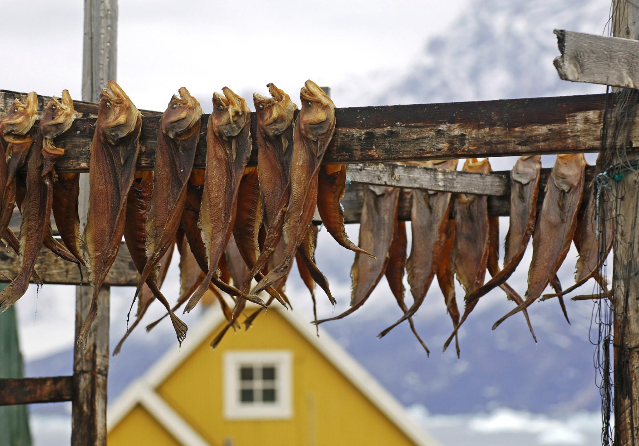 Кухня Гренландии
