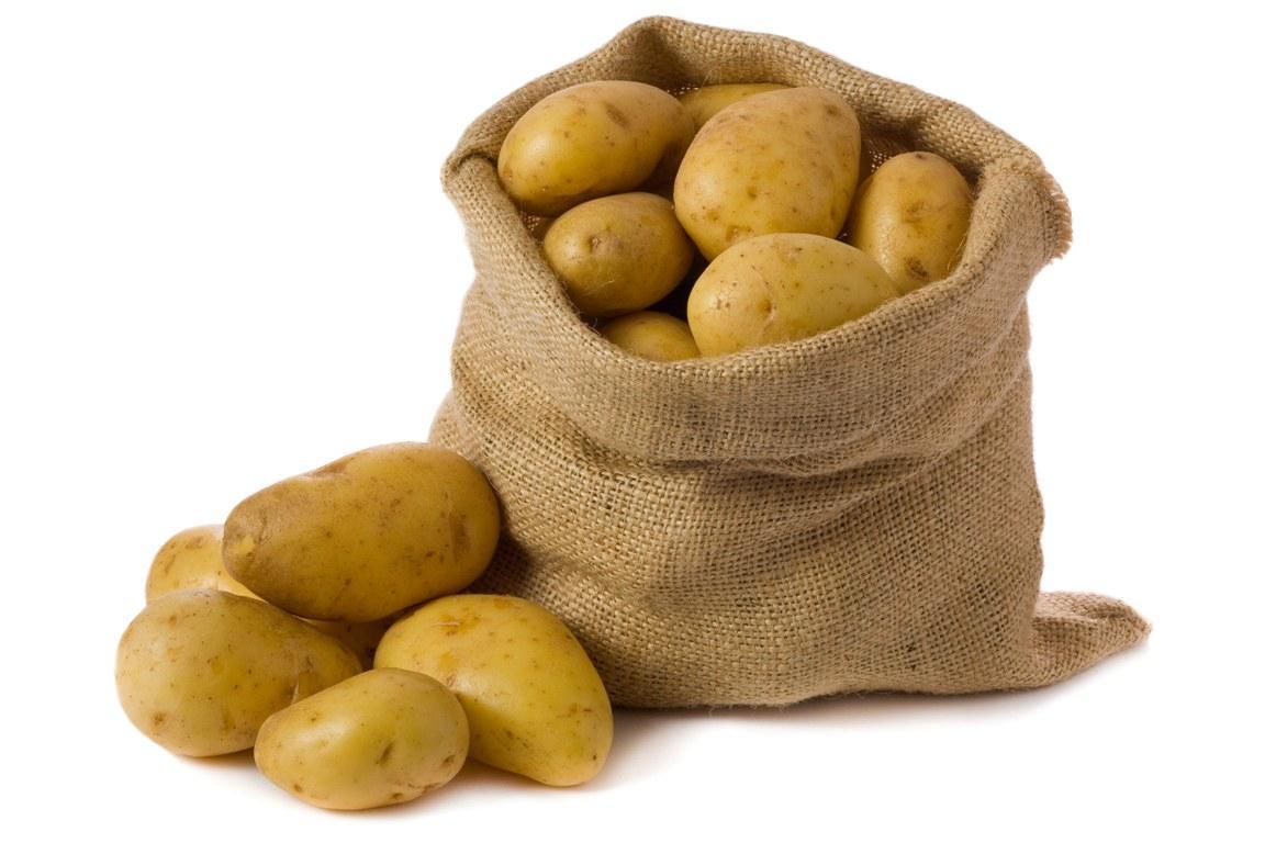 В 16 столетии в Ирландии начали выращивать картофель