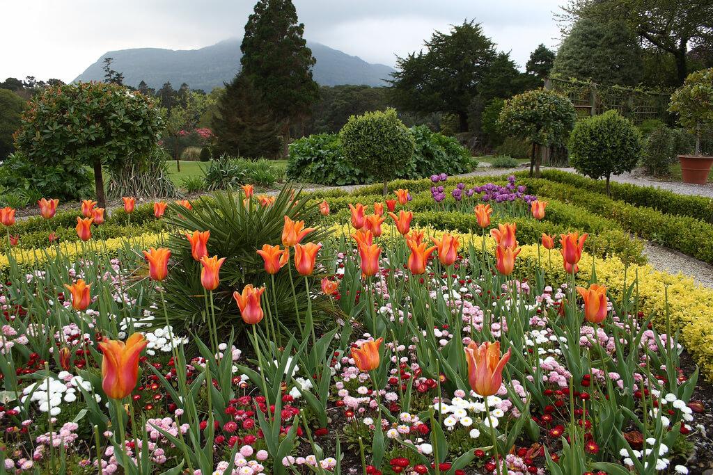 Сад Muckross House