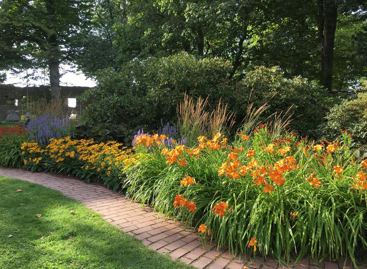 Цветочки в ботаническом саду
