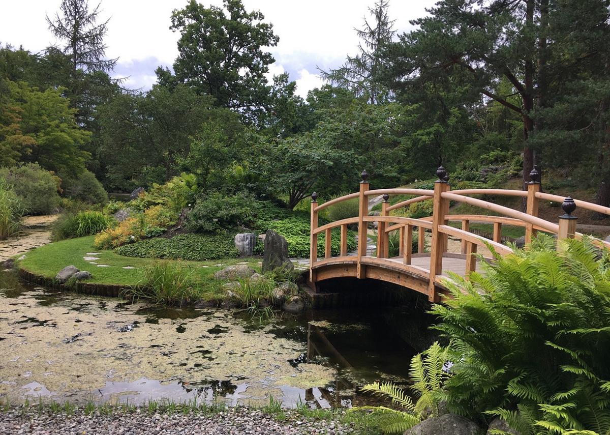 Посещение ботанического сада Berguis