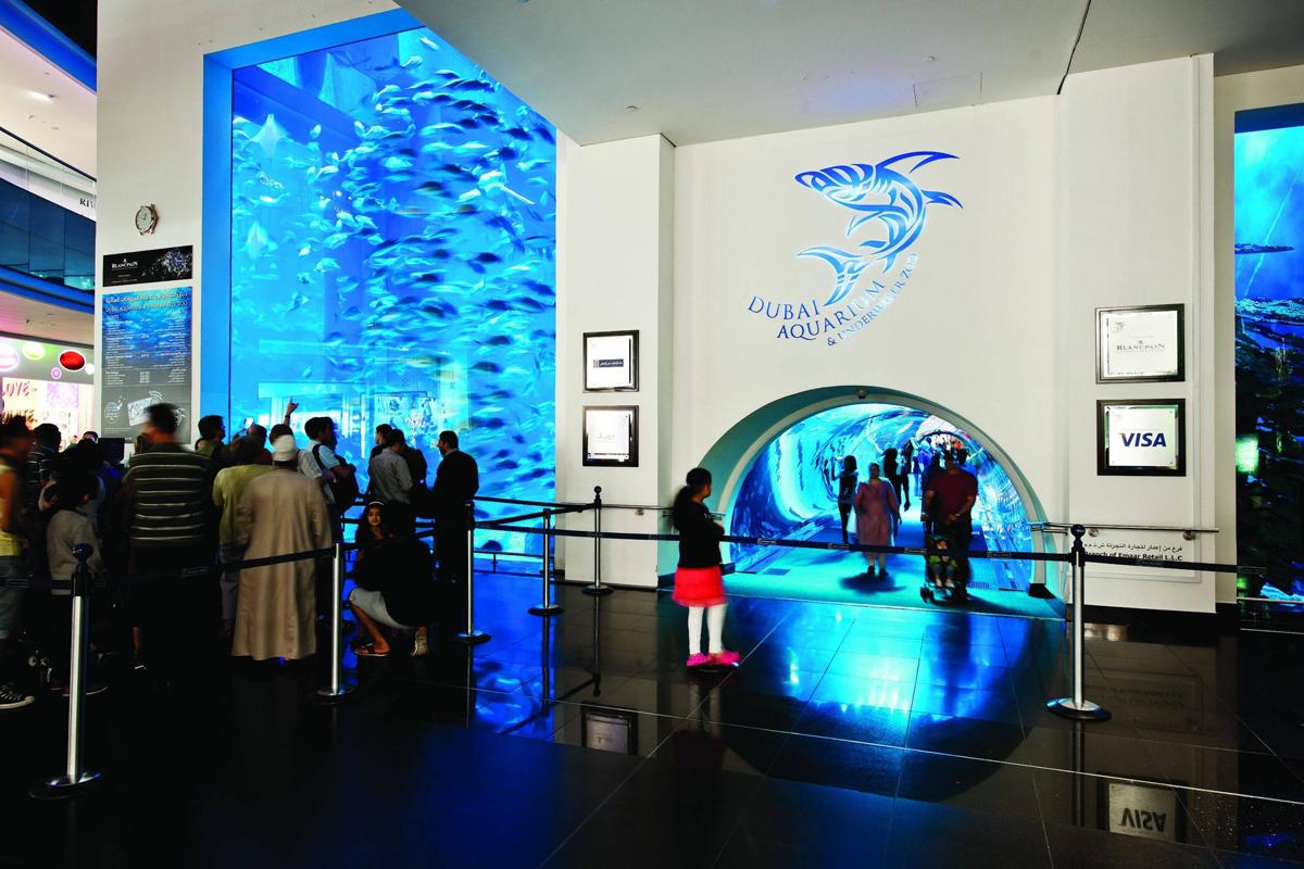 Вход в Океанариум в Дубай Молле