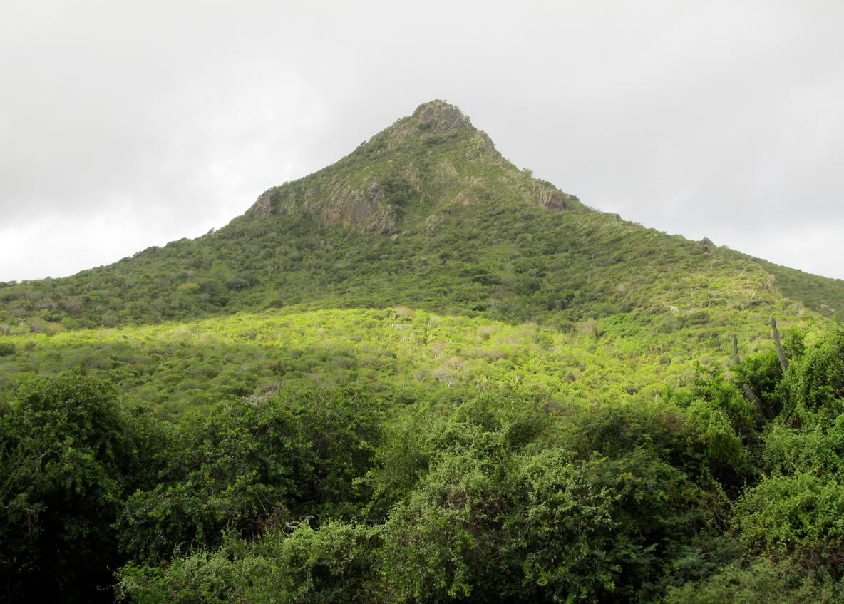 Гора Кристофер