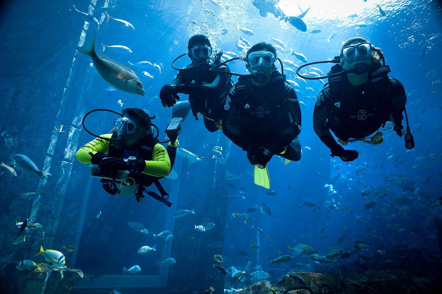 Дайвинг в аквапарке «Атлантис»
