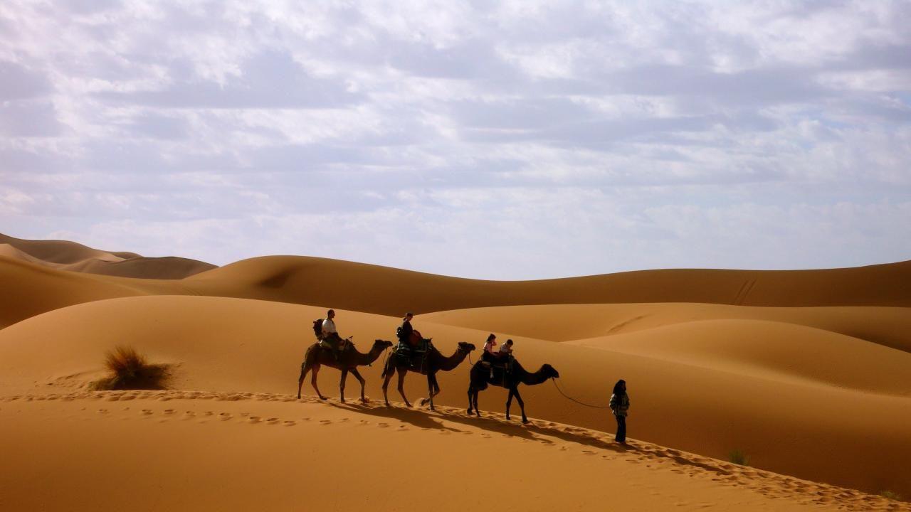 Пустынный регион ОАЭ