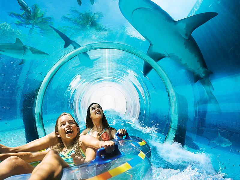 Горка «Атака акул»