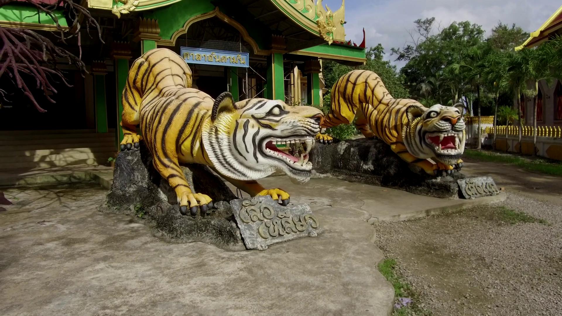 Статуи тигров у входа в недостроенный храм