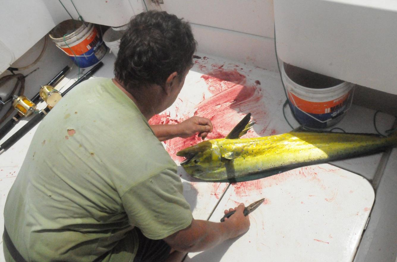 Период с сентября по март - удачное время для рыбалки