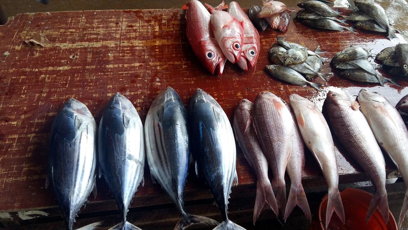 Рыбный рынок Kivukoni