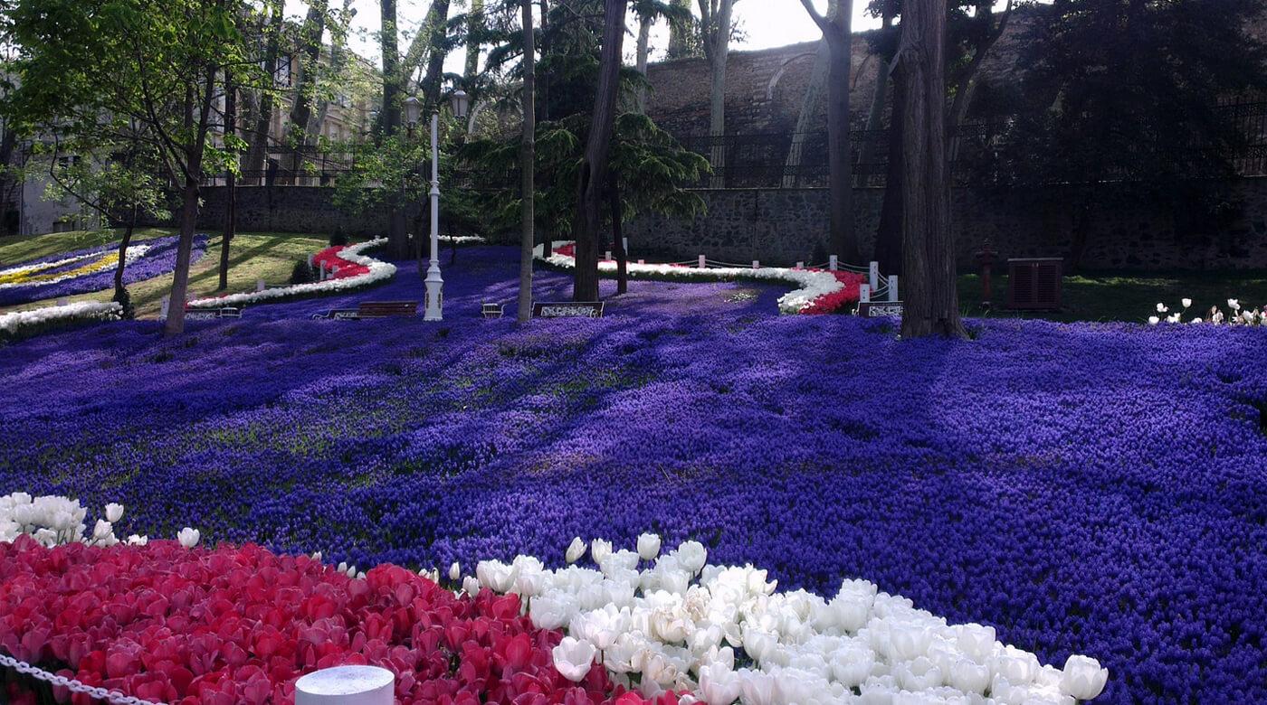 Цветочные ковры в парке Гюльхане