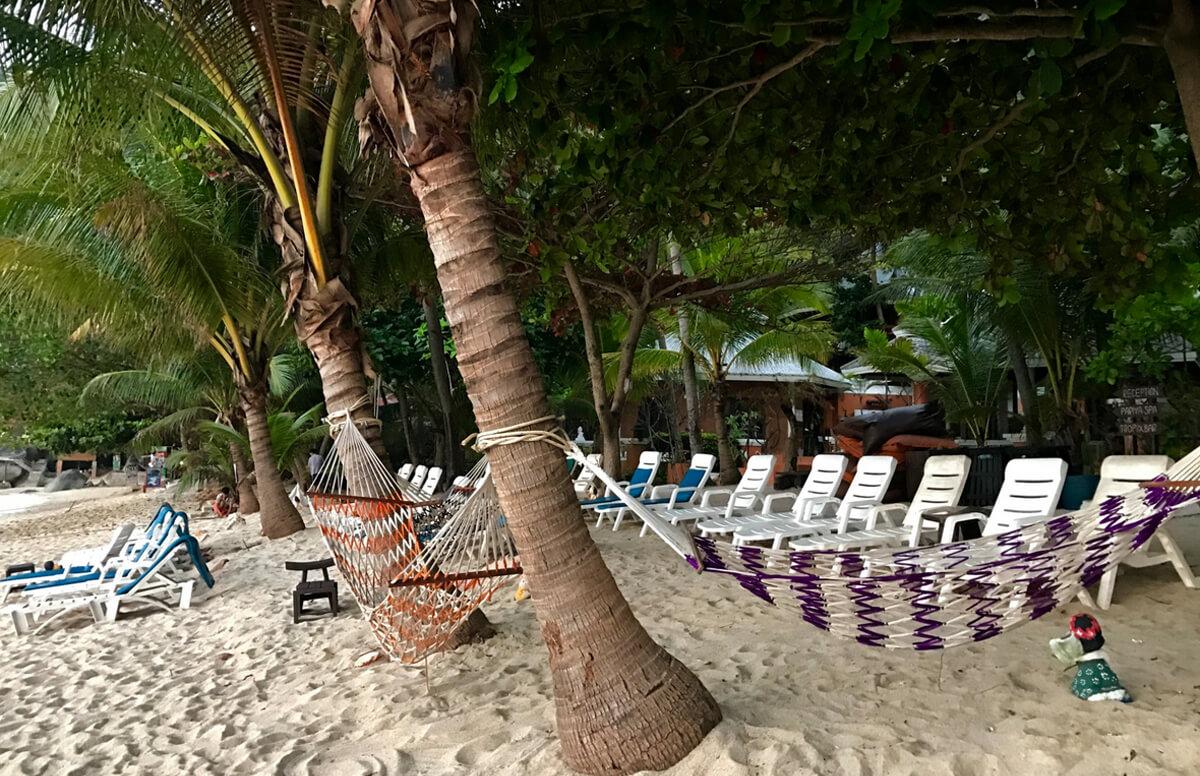 Лежаков на пляже много
