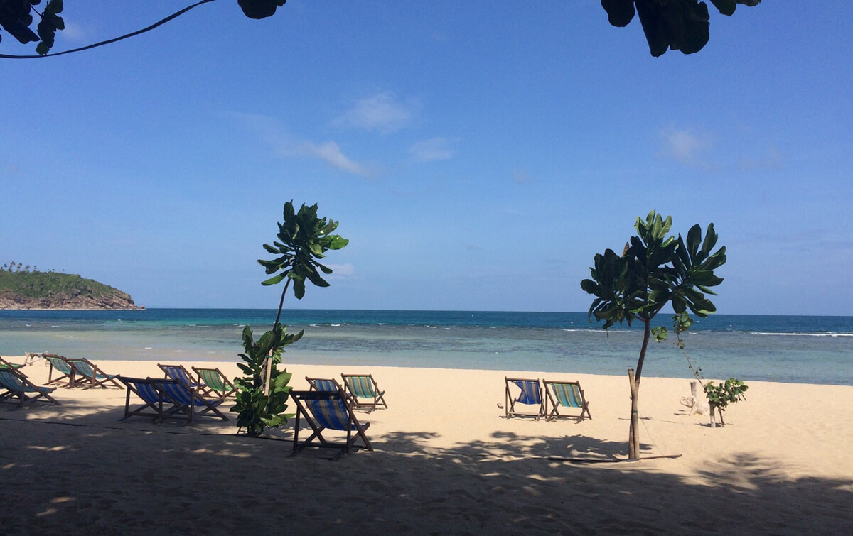 Тень на пляже создают деревья