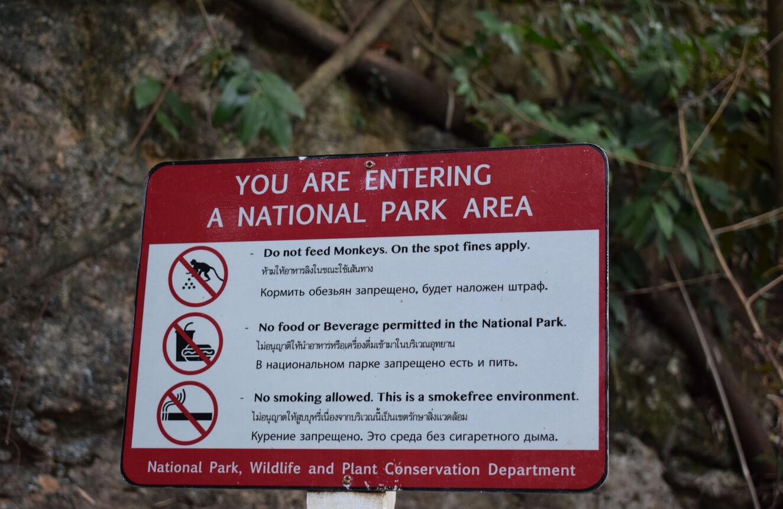 Кормить обезьян здесь запрещено