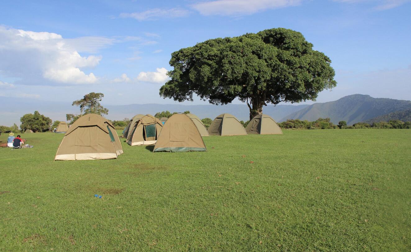 Кемпинг Simba Campsite